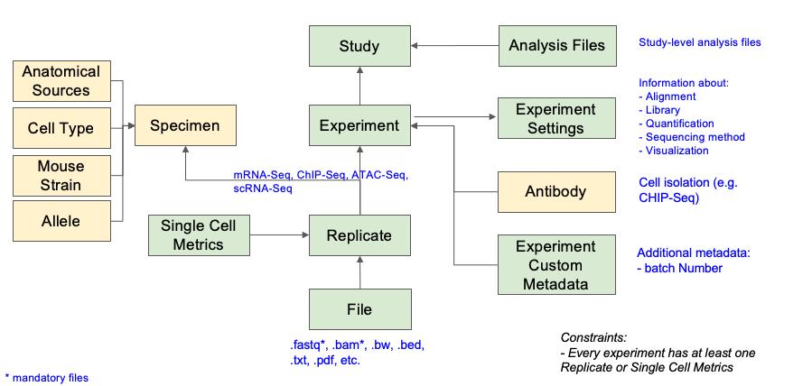 GUDMAP Data Overview | GenitoUrinary Development Molecular